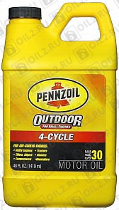 Купить PENNZOIL Outdoor 4-Cycle SAE 30 1,419 л.